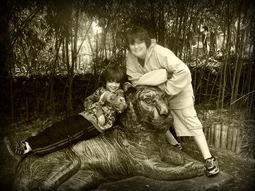 Zoo 27new